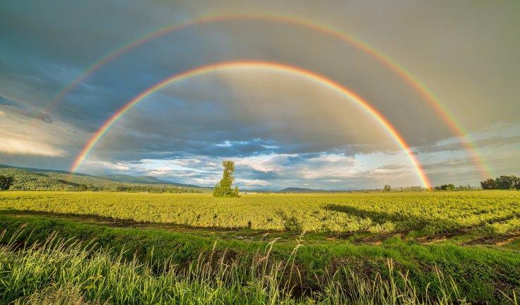 Double arc-en-ciel au-dessus d'un champ en Colombie-Britannique Canada