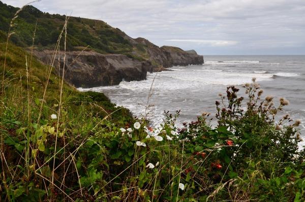 Photos de bords de mer escarpés aux falaises abruptes