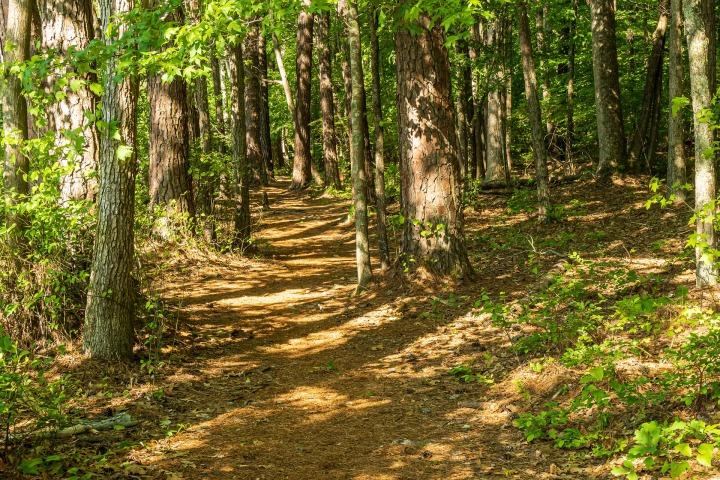 Activités en Montérégie: escapade nature près deMontréal