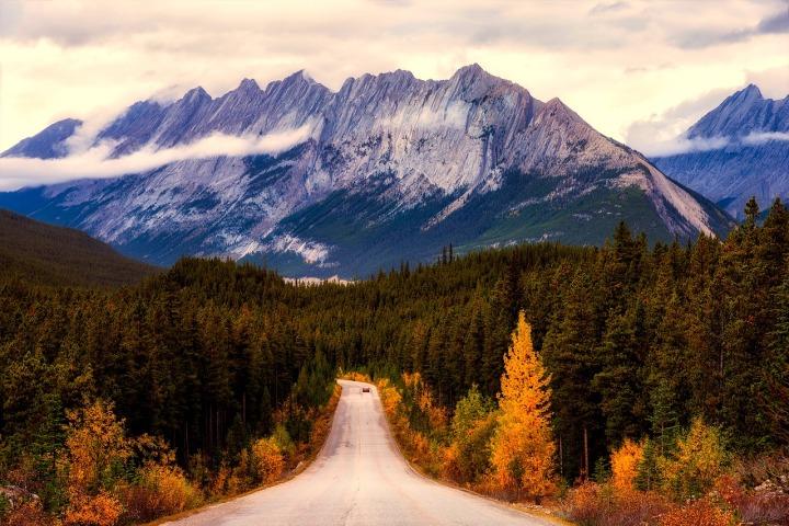 Route déserte, sapins verts et montagne enneigée