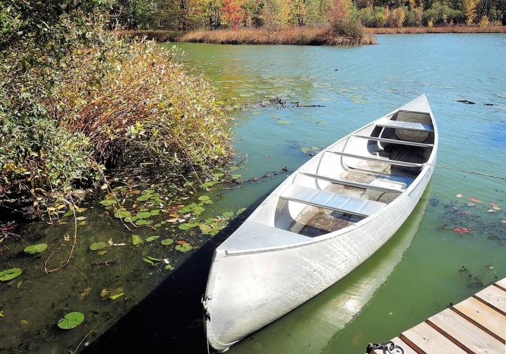 Canot sur l'eau d'un lac entouré d'arbre près du quai