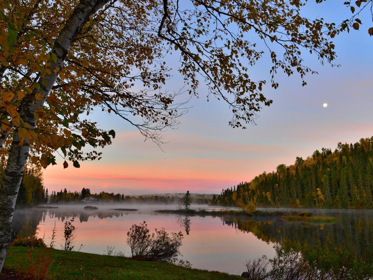 Arbres feuillus orange et vert, lac