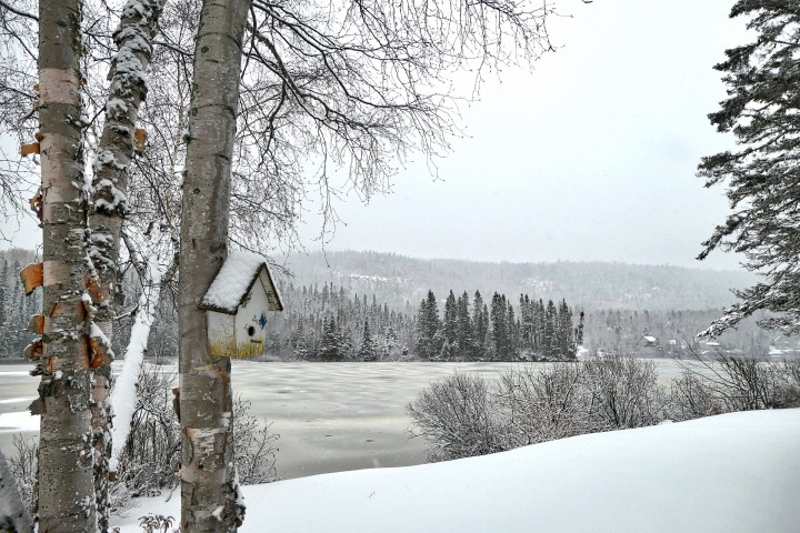 Où faire une promenade hivernale près de Montréal: 4 itinérairesthématiques