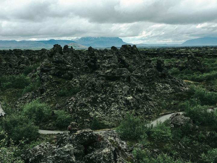 sentier-entouré-de-pierres-volcaniques-et-d'arbres-islande