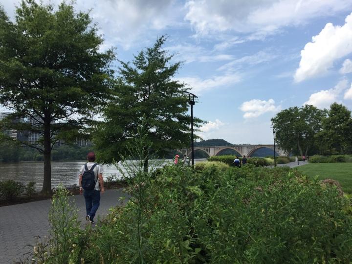 parc-au-bord-de-l'eau-près-d'un-pont-en-été