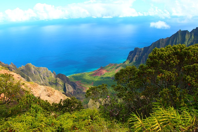 montagnes-verdoyantes-sur-le-bord-du-Pacifique-Hawaii