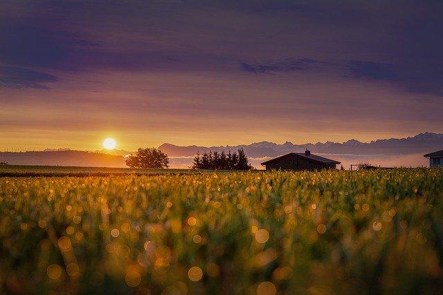 lever-du-soleil-sur-un-champ