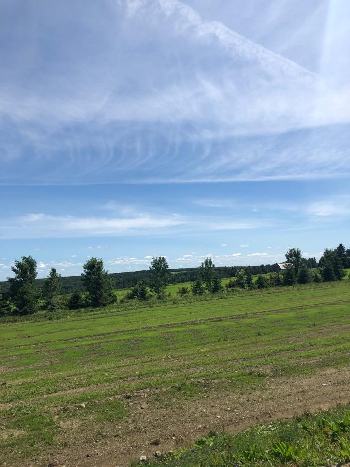 st-frédéric-champs-vallée-arbres-ciel-bleu