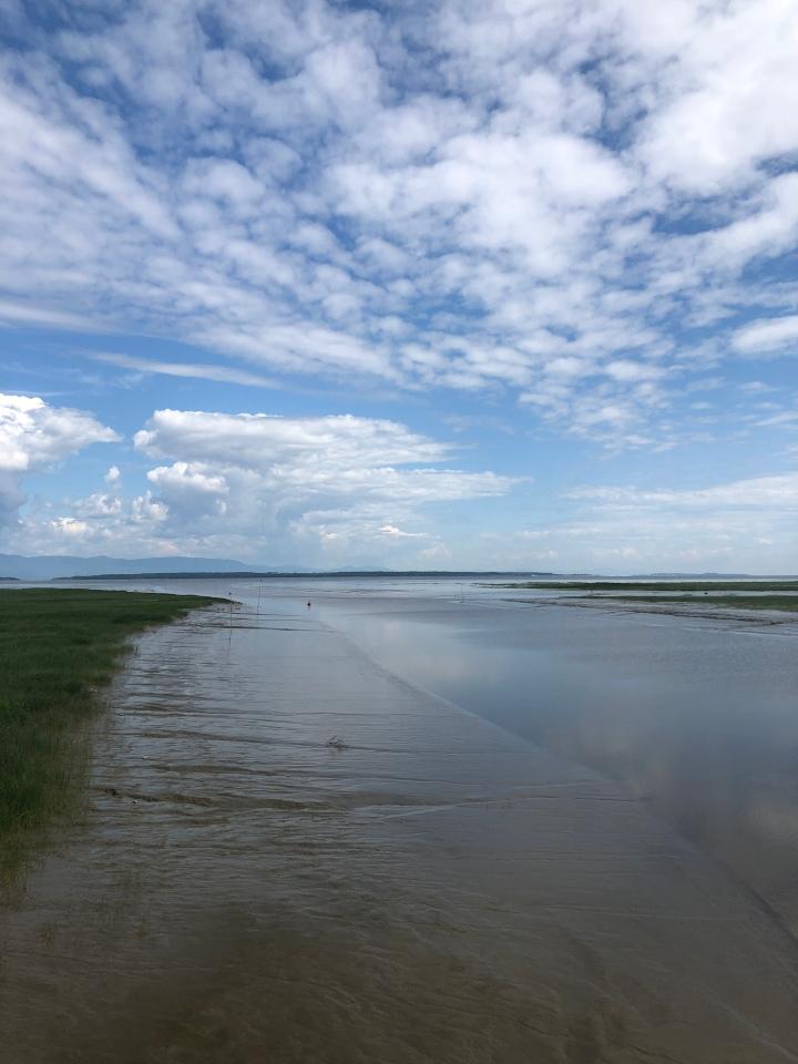 fleuve-marée-basse-montmagny