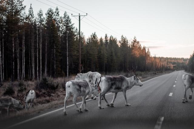 rennes-sur-la-route