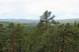 visiter-la-laponie-finlande
